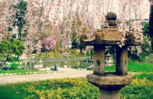 japanese-lantern