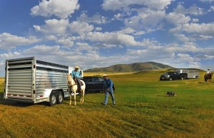 livestock-trailers