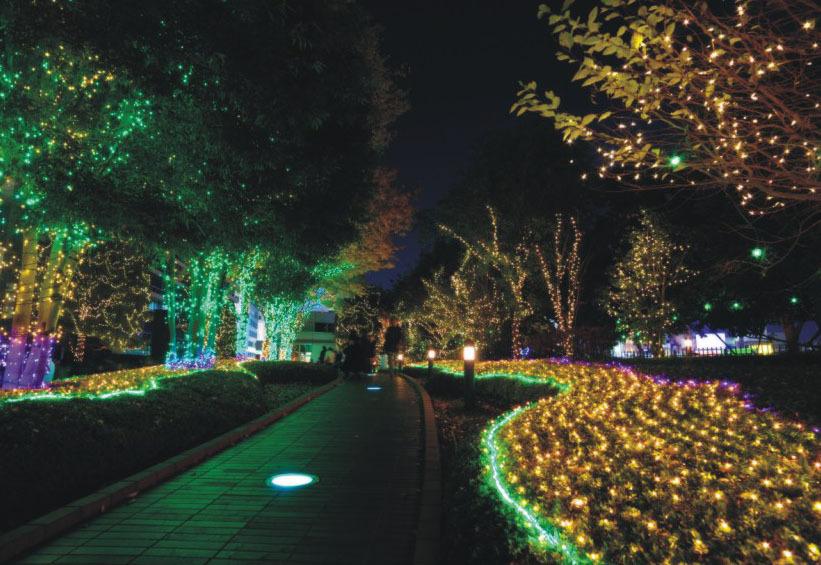 garden lights Led2