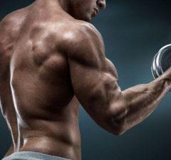 pre workout citrulline malate