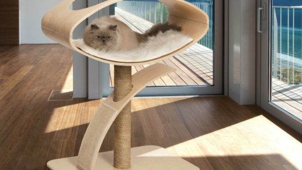 Cat Furniture cat plush toy