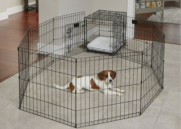 dog enclosure indoor 1