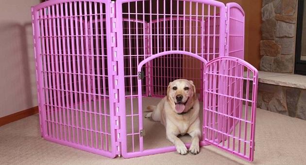dog enclosure indoor 2