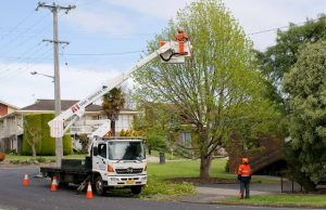 powerline service