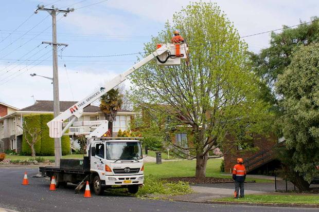 powerline service