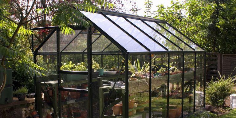 greenhousen in back garden